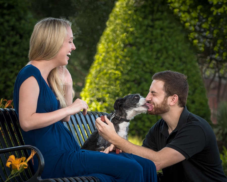 dog-kisses-man-during-engagement-proposal