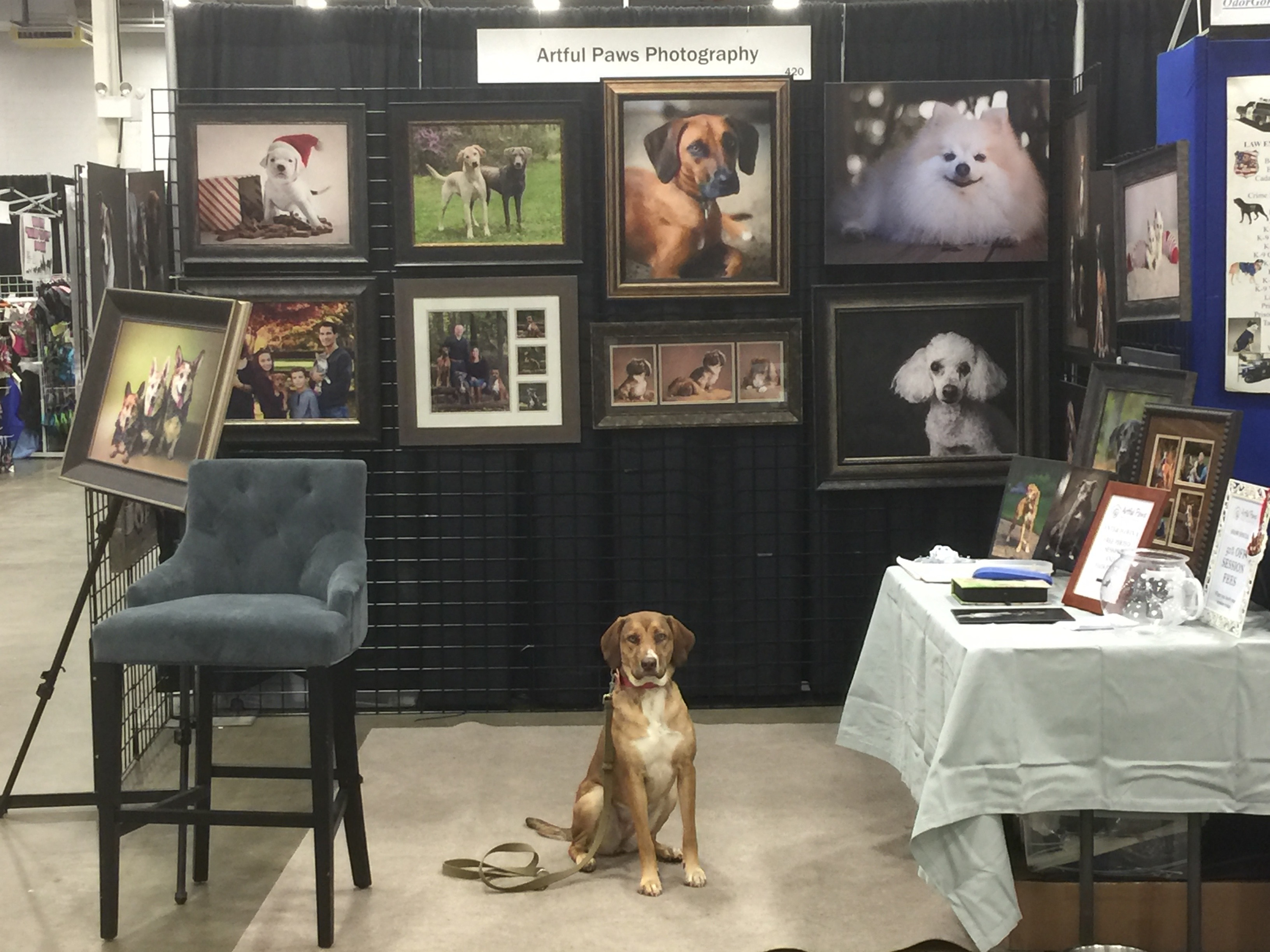 artful-paws-photography-booth-super-pet-expo