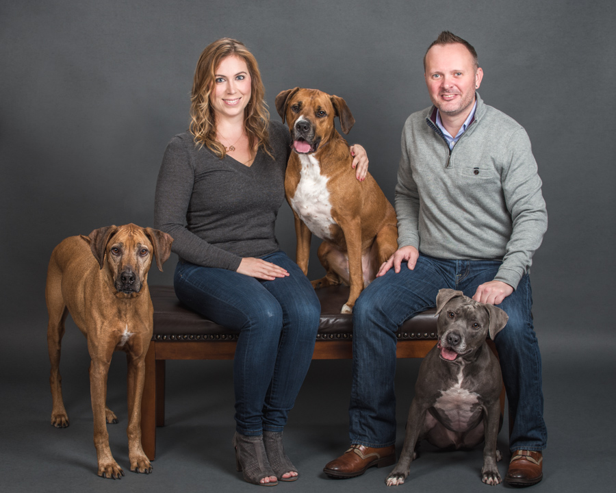 studio-dog-photography-family-portrait-three-dogs-7591.jpg
