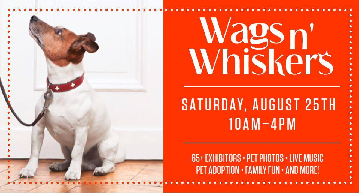 Wags N' Whiskers Festival at the Village at Shirlington