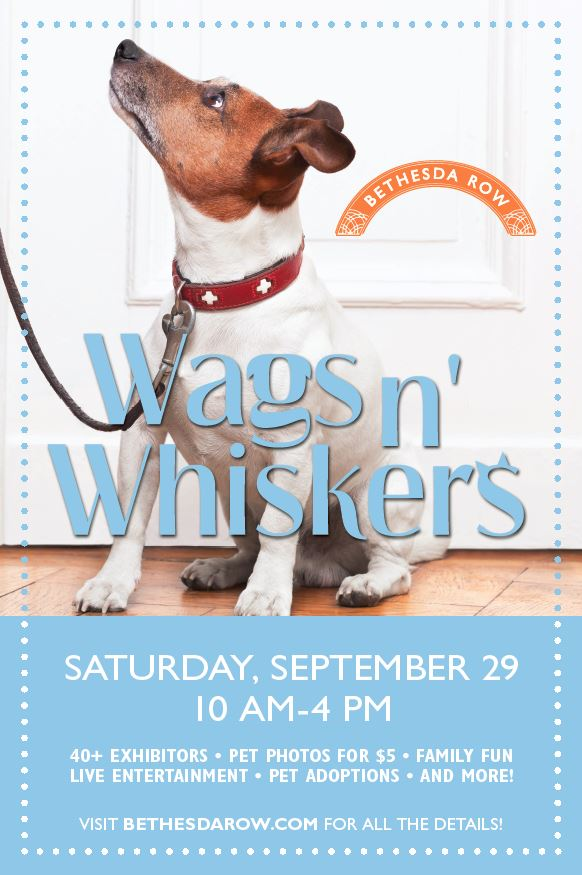 wags n whiskers Bethesda
