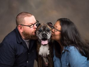 dc-pet-photography-boxer-dog-people-studio